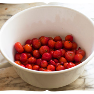 плоды шиповника для настаивания самогона
