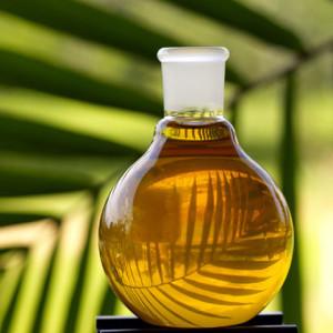 масло растительное очищенное