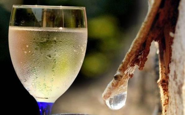 березовый сок и самогон