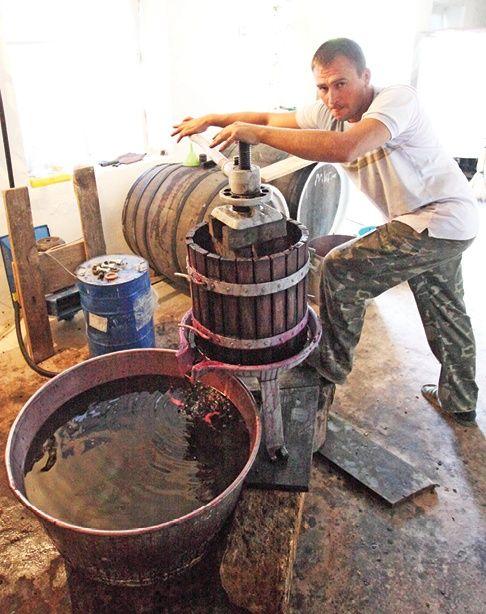 оборудование винодела
