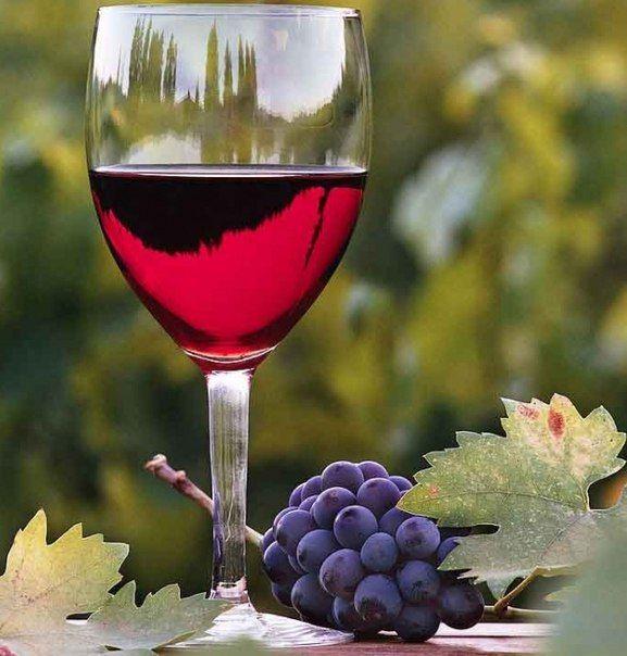 домашнее вино без сивушных масел