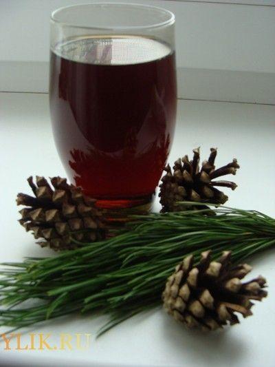 Настойка на водке из шишек сосны