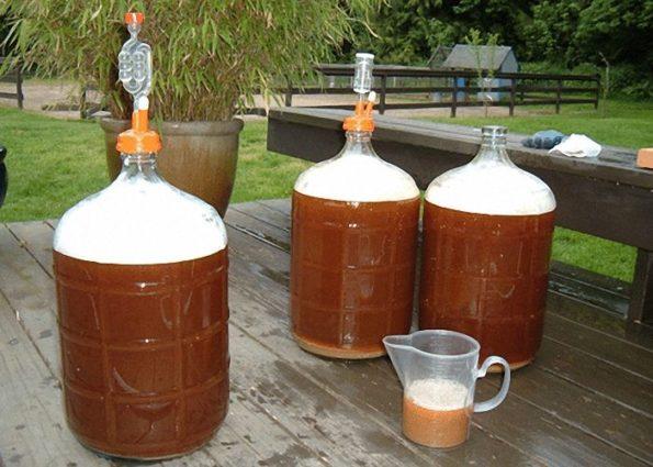Сколько бродит домашнее пиво