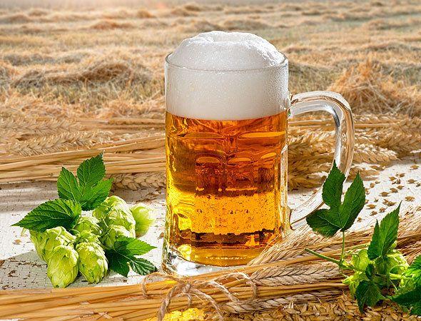 Пиво из зерна пшеницы