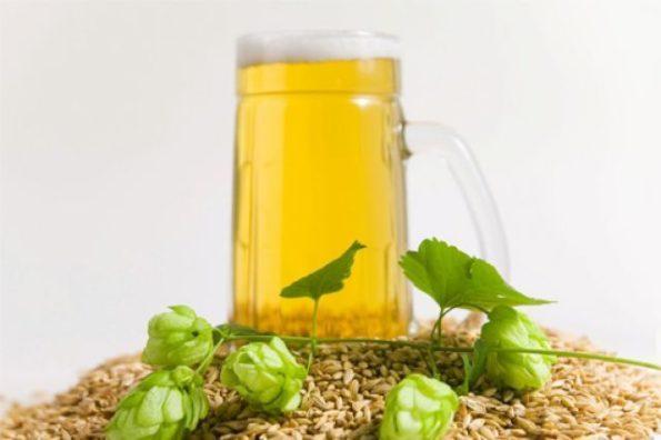 Светлое зерновое пиво