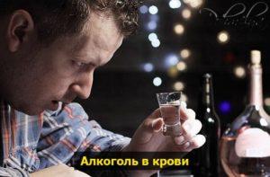 алкоголь в организме