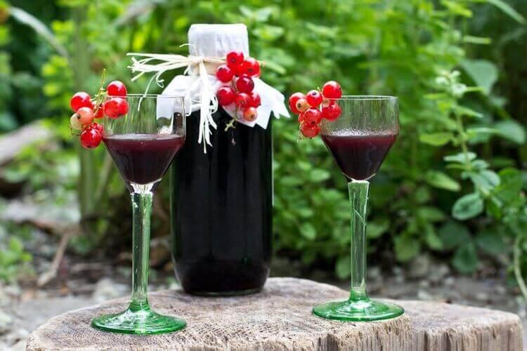 Как приготовить вино из смородины