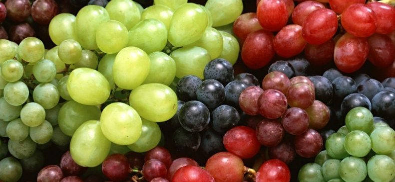 Как исправить вкус домашнего вина