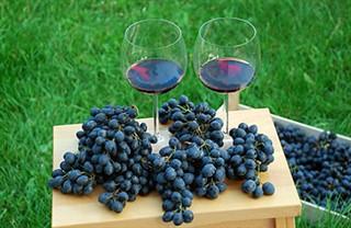 Чем отличается винный напиток от вина