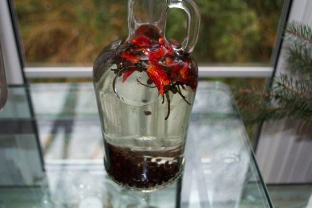 Помогает ли водка при простуде