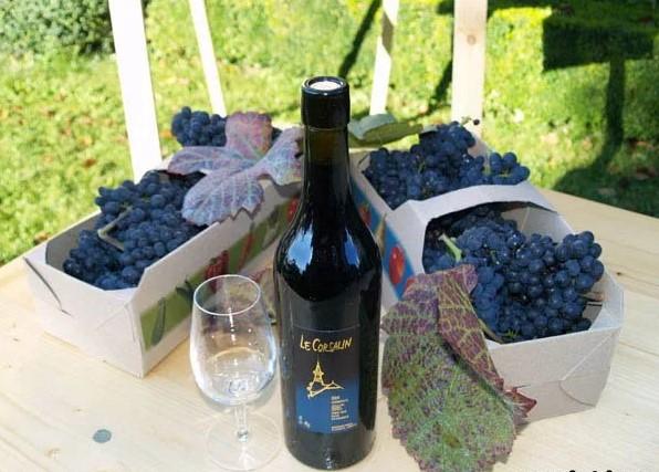 Готовим крепленное вино