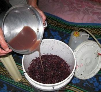 Вопросы приготовления домашнего вина