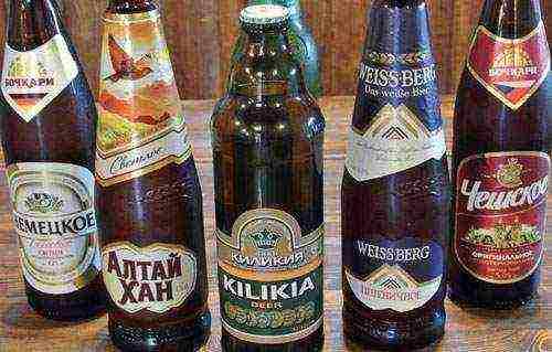Какое пиво лучше выбрать